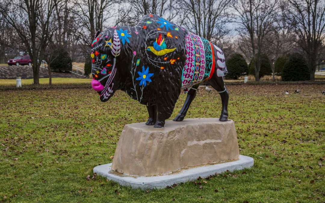 Bison-Tennial Project – Neolin